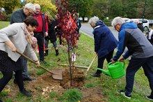 Personengruppe beim einpflanzen der Blutpflaume vor dem Bildungszentrum