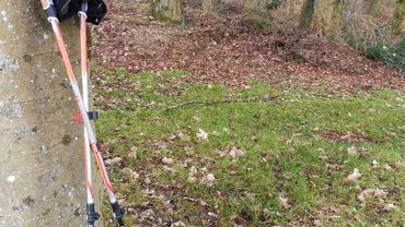 Walking-Stöcke am Baum lehnend im BIZ Gladenbach